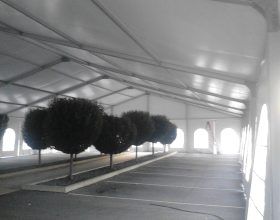 18m x 30m losberger tent with trees underneath