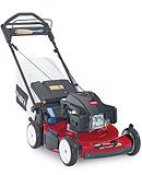 Toro lawn mower rental