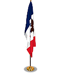 american-flag-and-pole-icon