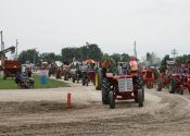 Line of steam engine tractors.