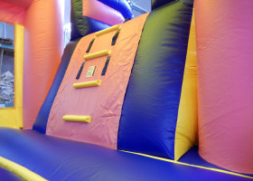Ladder inside Birthday cake bounce house and slide combo